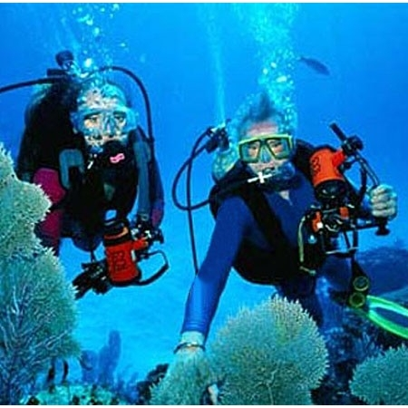 Divers Discount Florida - PADI Nitrox Specialty Certification Dives ...
